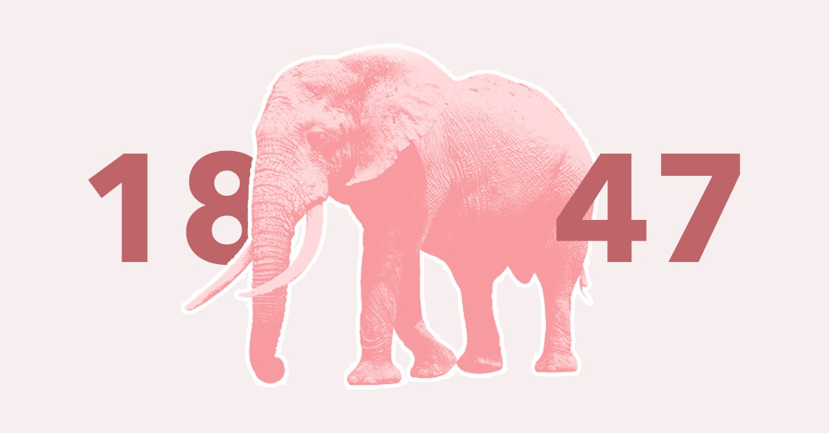 NX 1847 Continuous Release – Addressing the Elephant